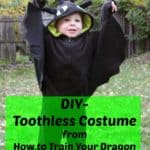 Toothless Costume from How to Train your Dragon