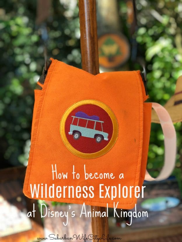 How to become a Wilderness Explorer