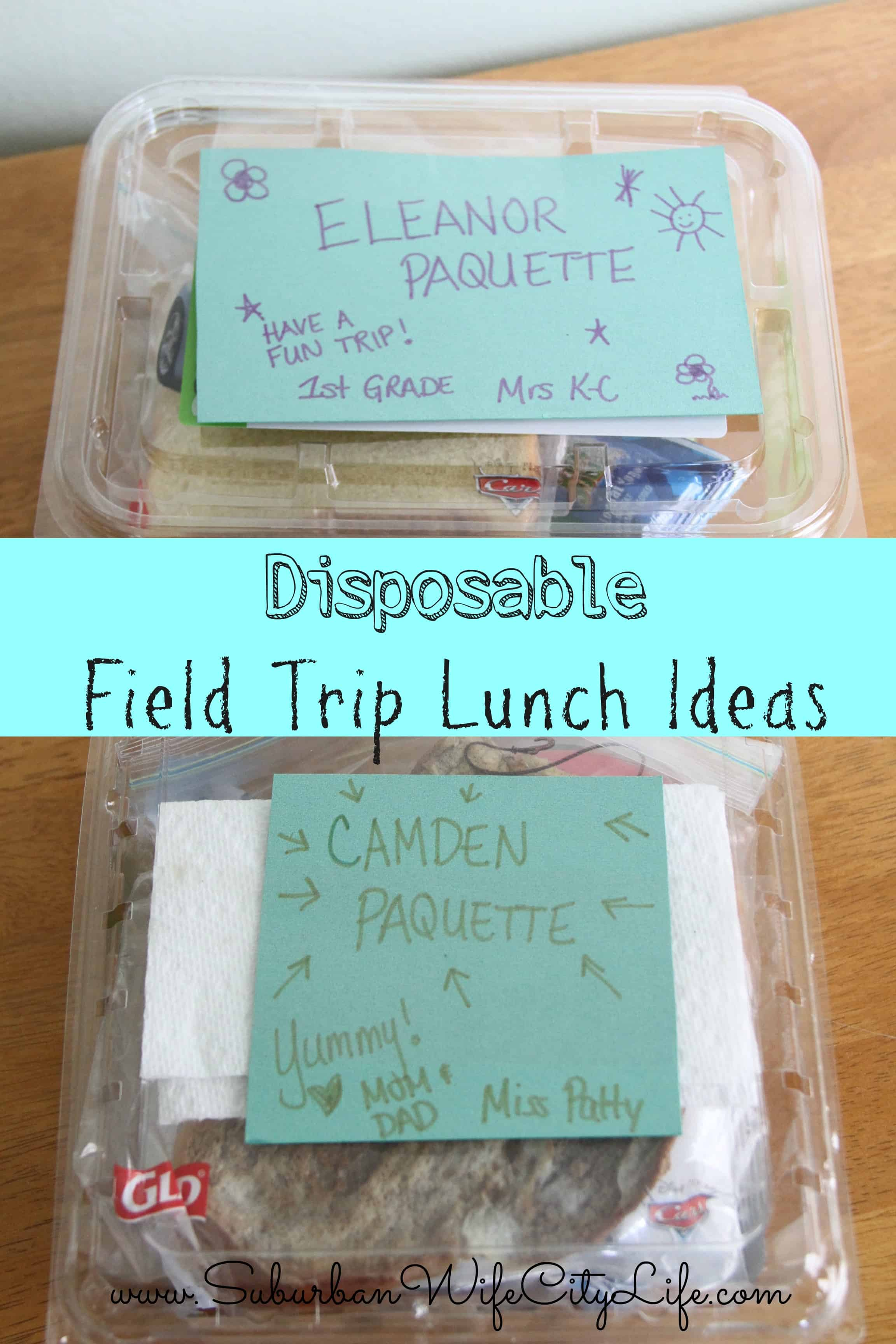 Field Trip Lunch Ideas