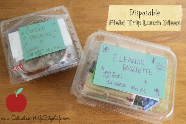Disposable field trip lunch ideas