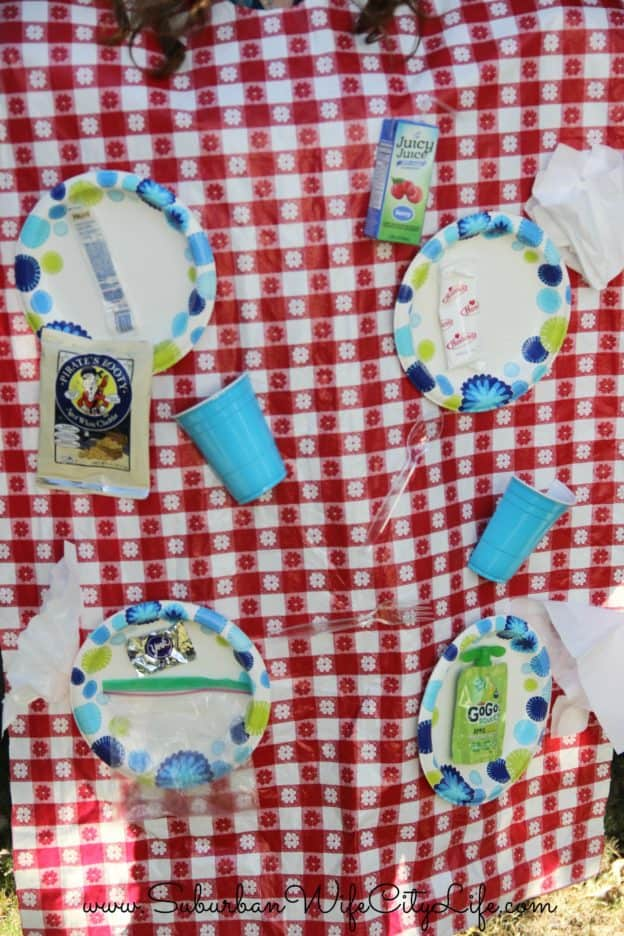 Picnic Blanket Costume (quick, easy and under $10)