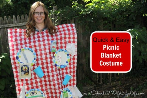 Quick and easy picnic blanket costume
