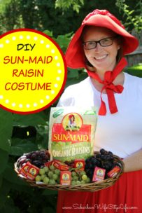 Sun Maid Raisin Costume