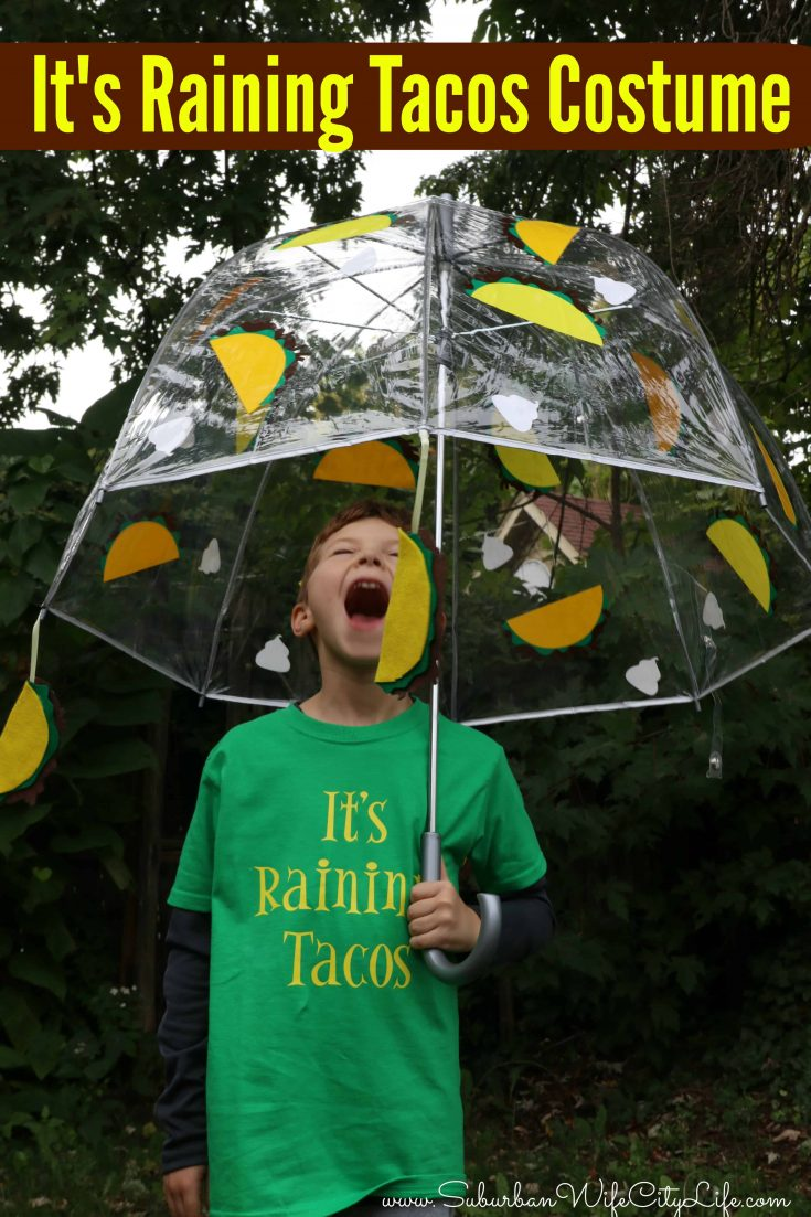 It's Raining Tacos costume