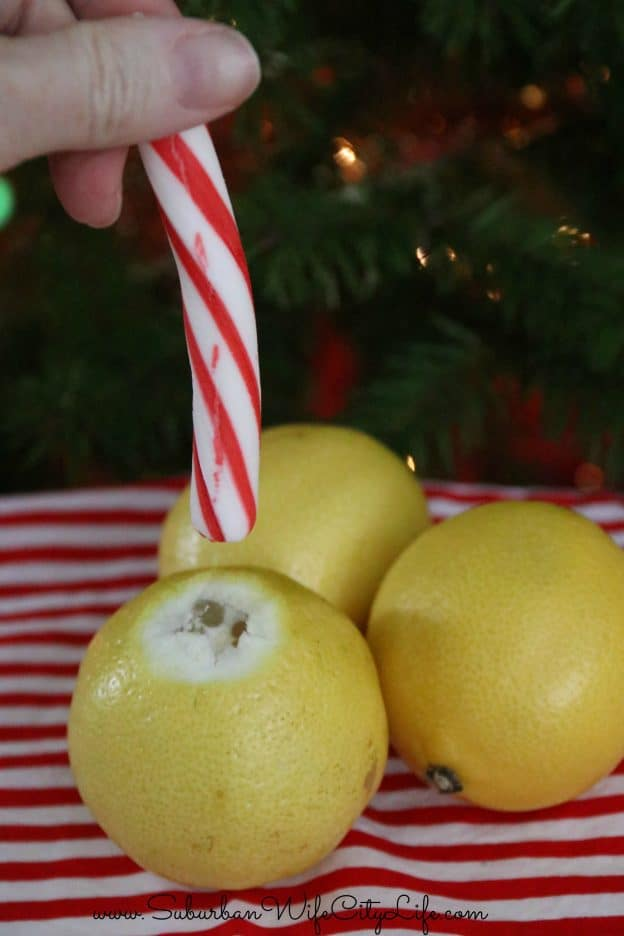 How to make Lemon Peppermint Sippers