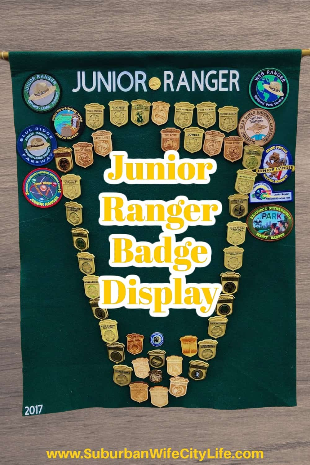 Junior Ranger Badge Display