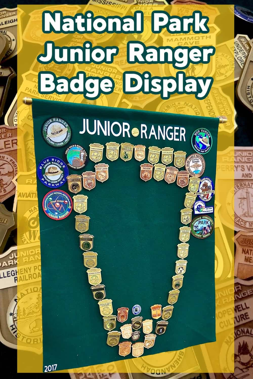 Junior Ranger Display