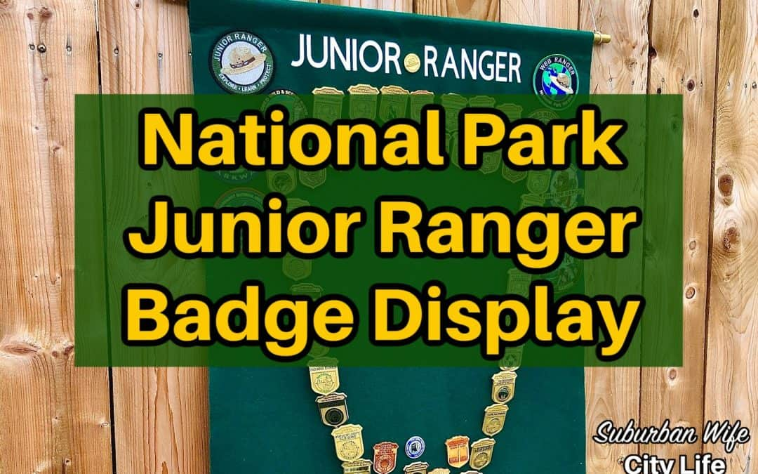 National Park Junior Ranger Badge Display