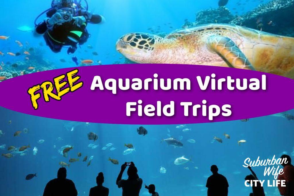 Aquarium & Ocean Virtual Field Trips